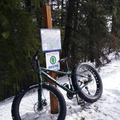 Fat Bike Rosie Boa